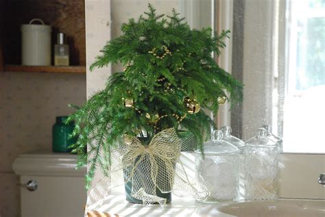 decorate with mini christmas trees learn how from the pros christmas decorating ideas 3 ways to decorate mini trees