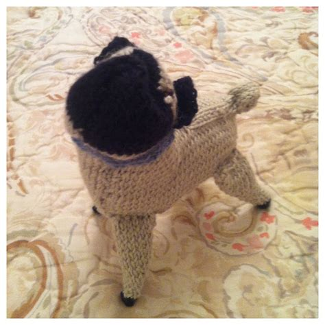 pug knitting pattern knits etc knits knit pug update 3