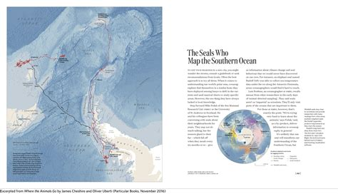 where the animals go the seals who map the southern ocean where the animals go