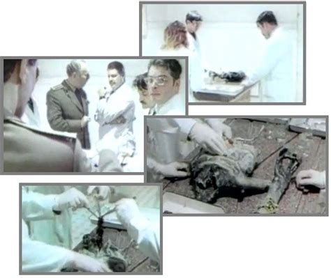 The Kgb Hoax et zetas say two autopsy are frauds while