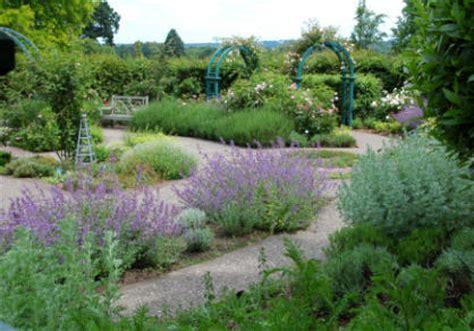 Make a Herb Garden   Planting Herbs   Gardenseeker.com
