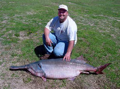 Okla Records Okiefish Fish Oklahoma