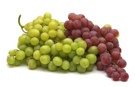 uva da tavola coltivazione uva da tavola curiosit 224 uva