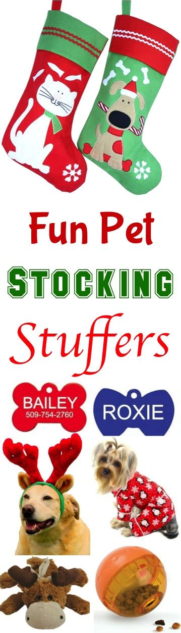 fun stocking stuffers fun pet stocking stuffers 33 gifts your pets will love