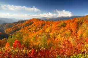 smoky mountains fall colors 17 reasons why tennessee is definitely a state above the