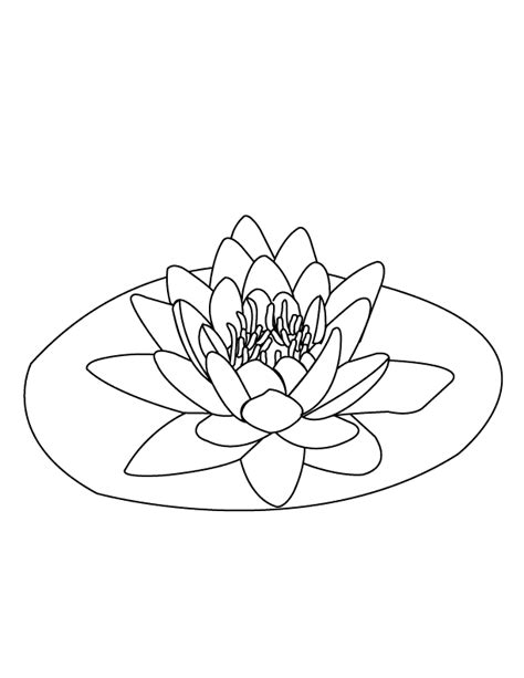 coloring page water lily free coloring pages of monet water lilies