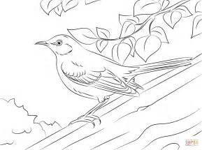 Northern Mockingbird Coloring Page Free Printable Mockingbird Coloring Page
