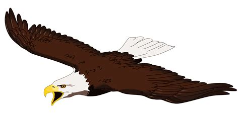 eagle clipart clip soaring eagle www imgkid the image kid