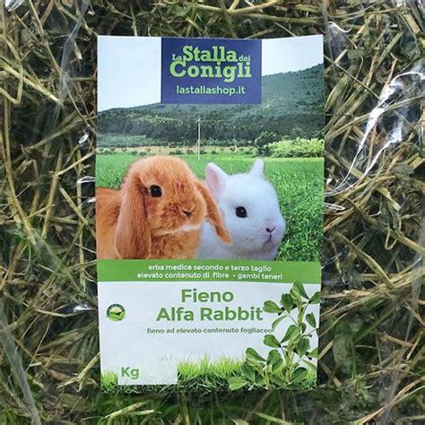 coniglio nano alimentazione l alimentazione coniglio nano la stalla dei conigli