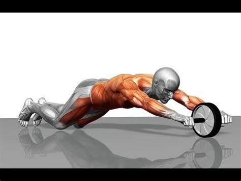 ab wheel rollout tutorial youtube