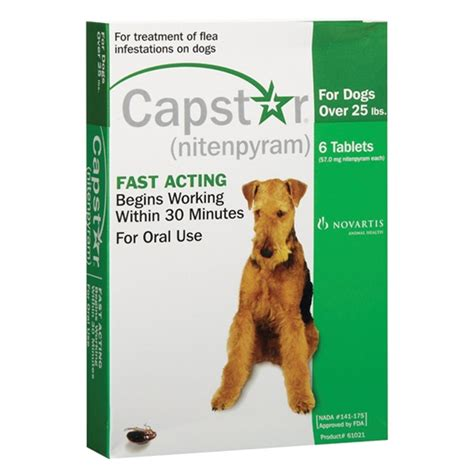 safe flea treatment for puppies southernstates capstar flea treatment for dogs 25 lb 6 pk southern states