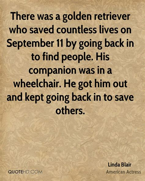 golden retriever wheelchair blair quotes quotehd