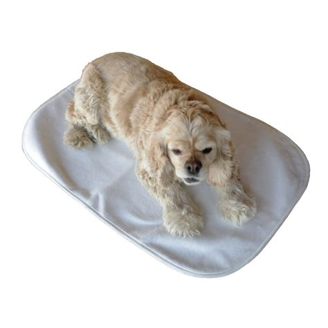 Pet Giveaways - guest achy paws self warming pet mat giveaway fantabuless reviews
