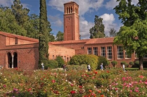 Csu Chico Professional Mba by 50 Best Graduate Nursing Schools In America 2016 Top