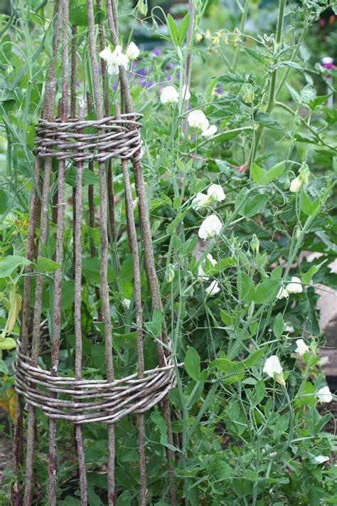 Wicker Trellis wicker trellis garden