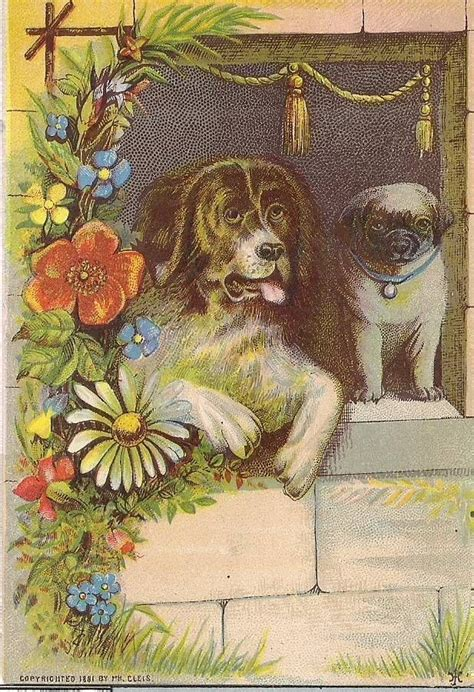 st bernard and pug 1000 images about antique st bernards and others on