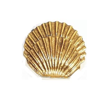 Shell Cabinet Knobs by Emenee Or206 Sea Shell Cabinet Knob Low Price Door