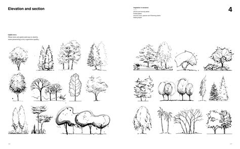 Landscape Graphics 1000 Images About Architectural Illustration Tips On