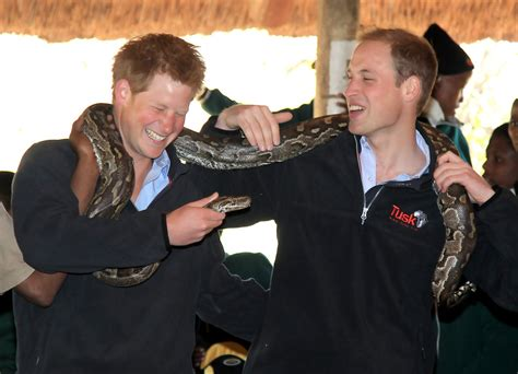 prince william education prince william and harry visit botswana day 2 2 of 20