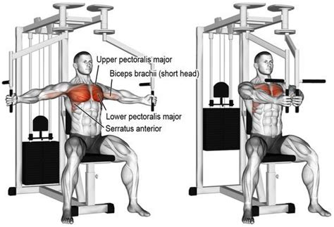 Pec Deck Fly by Superset Chest Workout The Best 5 Supersets To Build A