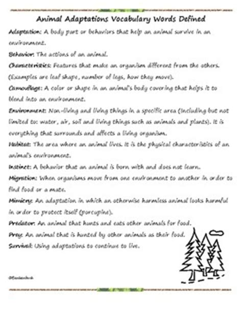 animal worksheet new 582 animal adaptations worksheets