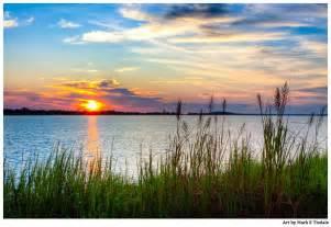 Landscaping Savannah Ga by Savannah River Sunrise Coastal Landscape Art Print