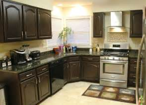 Kitchen Cabinets Painted by Wall Color With Espresso Cabinets House Furniture