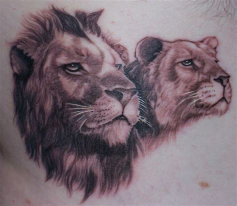 lion and lioness tattoo designs 90 best design ideas on askideas