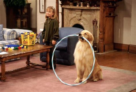 what kind of dog is comet from full house remembering full house fridays warner bros
