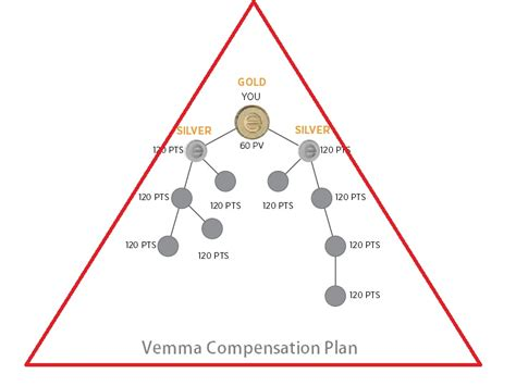 energy drink pyramid scheme vemma deemed a pyramid scheme and shut by the ftc