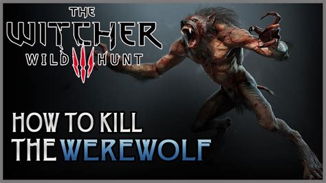 wild hunt witcher 3 werewolf the witcher 3 wild hunt how to easily kill a werewolf