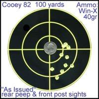 printable aqt targets savage 93 100 yard target pictures images photos
