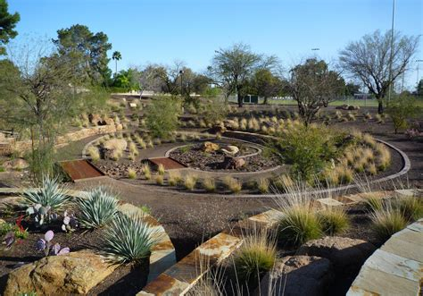 xeriscaping ideas how to xeriscape your san diego yard