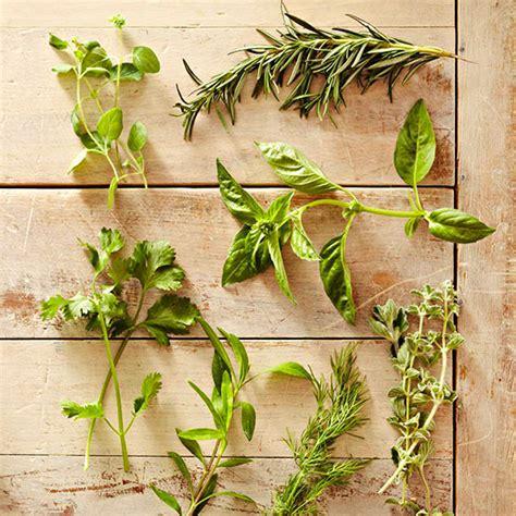herb substitutes