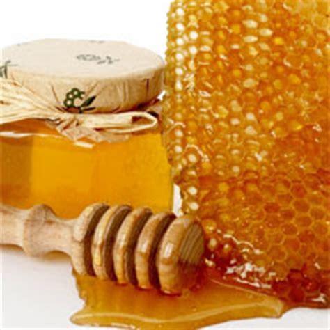 carbohydrates honey stayia farm honey recipes