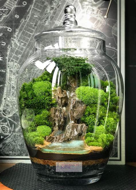 home decor mini terrariumwaterfall plantas