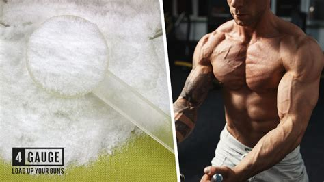 creatine vs caffeine creatine monohydrate vs pre workout workout