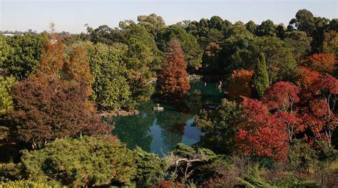 Auburn Botanic Garden Auburn Botanic Gardens Open Day Auburn Parraparents