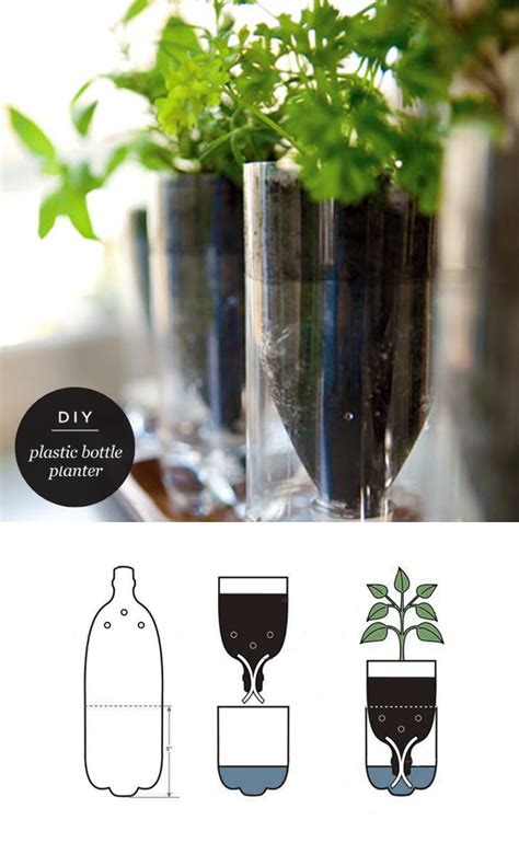 diy self watering herb garden maiko nagao diy upcycled plastic bottle herb planter
