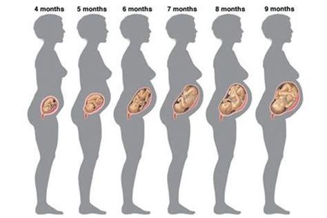 1a parcela do 13 dos aposentados sera em 2016 gravidez passo a passo dos 9 meses