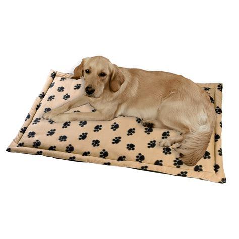 cuscini per cani taglia grande tappeto per cani di taglia grande cucce casette e
