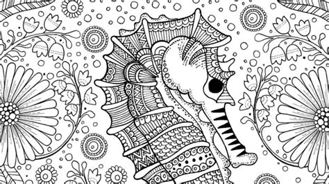 hard seahorse coloring pages free seahorse colouring page for adults crafts on sea