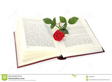 libro footpath flowers open book and rose stock photo image of spirituality 12695986
