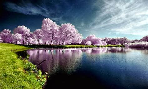 wallpaper pemandangan alam di jepang kumpulan foto pamandangan indah di jepang shadactivity