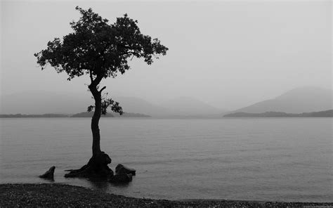 Black And White Landscape Photography Quotes Black White Computer Wallpapers Desktop Backgrounds