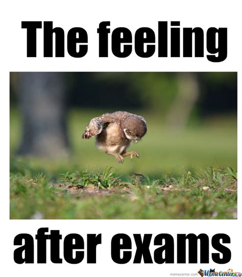 Exam Memes - exams meme 28 images good luck exam meme www pixshark
