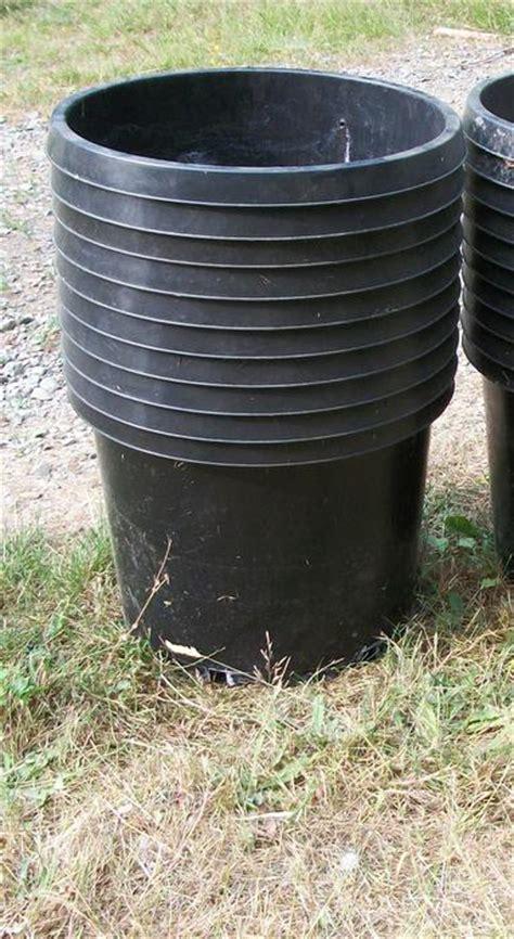 plant pots  gallon   gallon duncan cowichan