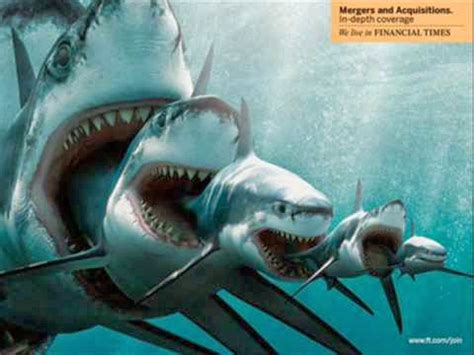 Sea Wall Murals megalodon wallpaper hd wallpapersafari