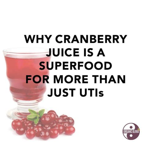 Why Is Cranberry Juice For Detox by Why Cranberry Juice Is A Superfood For More Than Just Utis