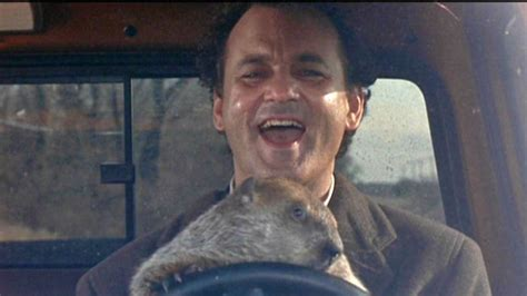 groundhog day actor bill murray reenacts groundhog day by going to see